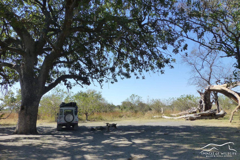 Campsite in Moremi, Botswana