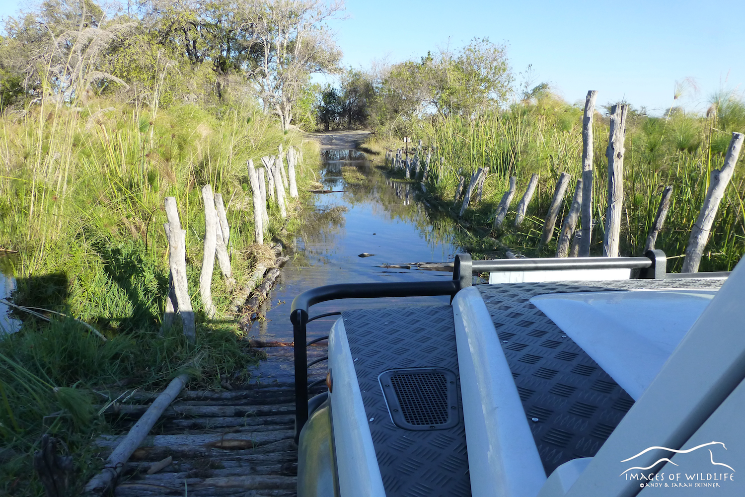 Decidely ricketty bridges in Botswana