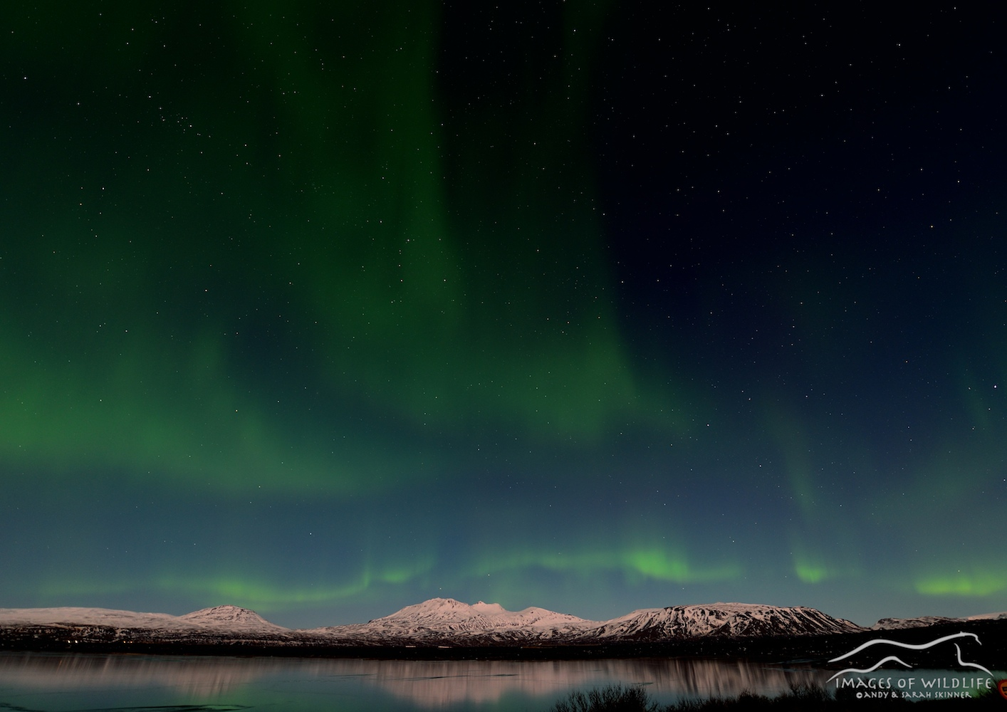 Northern Lights 005
