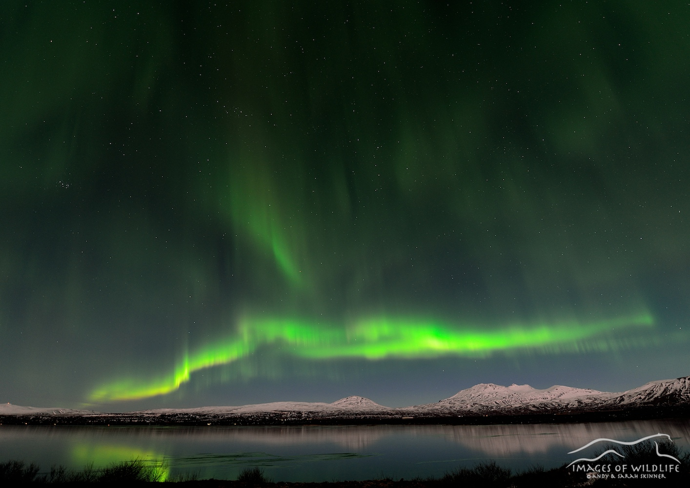 Northern Lights 006