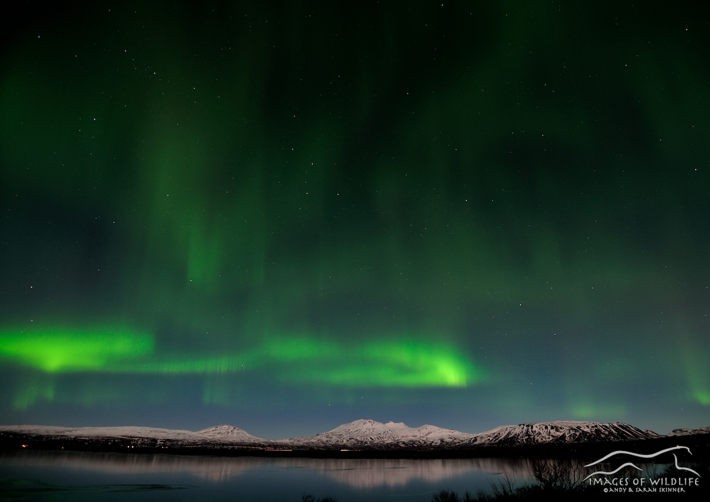 Northern Lights 007