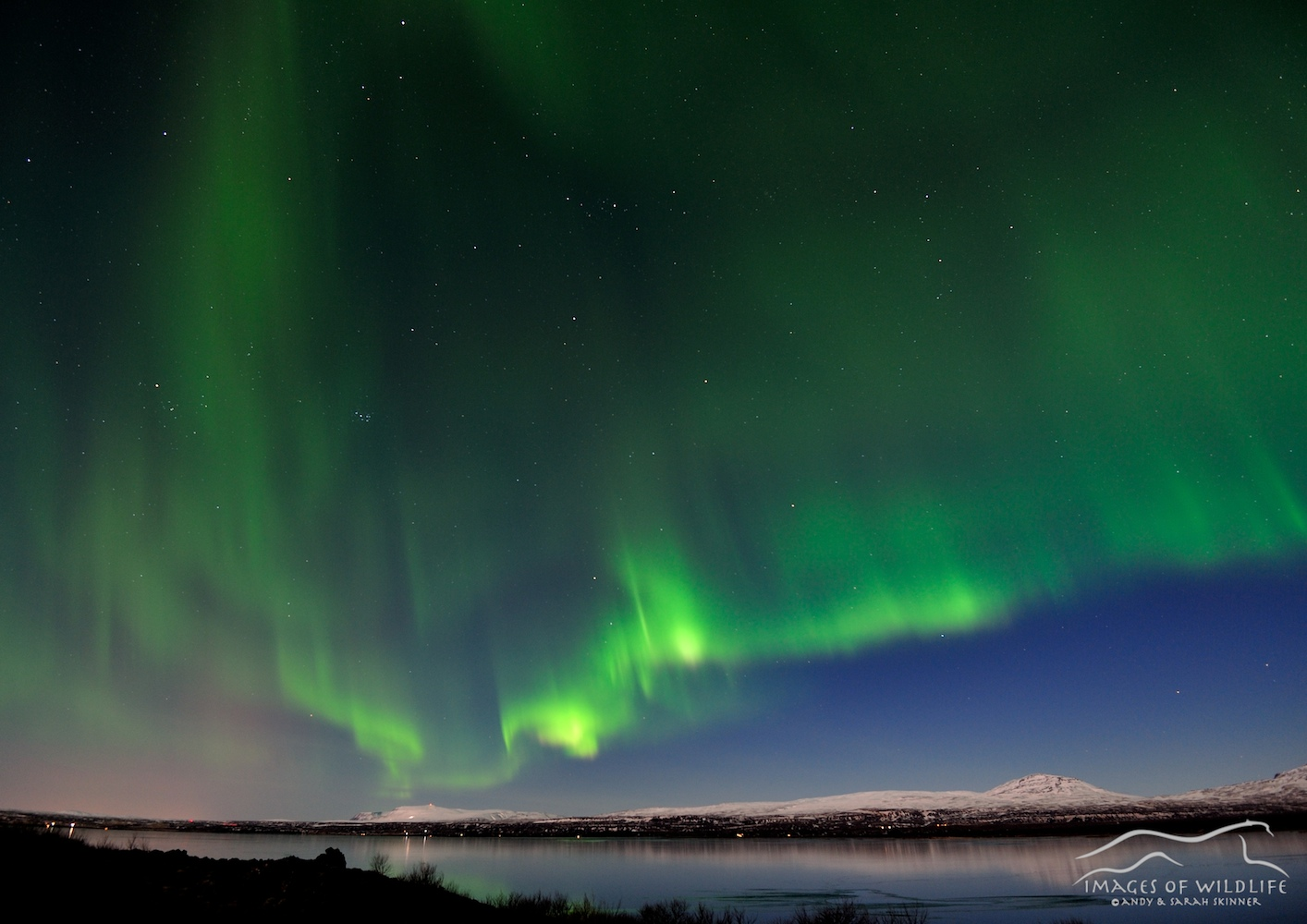 Northern Lights 008